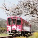 nishikigawa01
