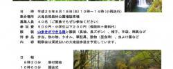 五木大滝自然森林公園自然観察会チラシ_ページ_1